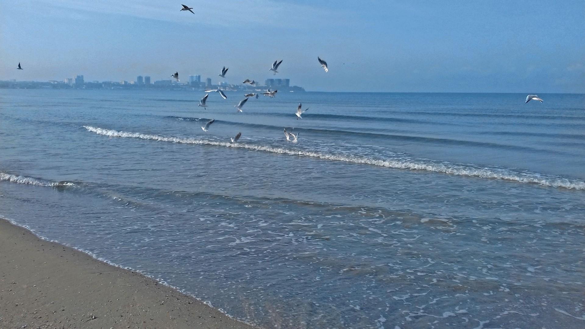 Бархатный сезон завершается, но если повезет с погодой, в начале месяца еще можно будет купаться и загорать